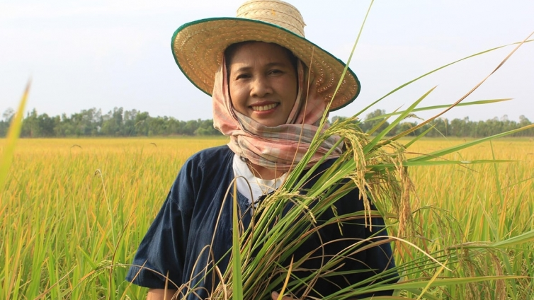 Thailand Woman in Field